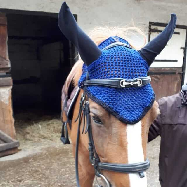 Insolite ! Bonnet au crochet pour cheval