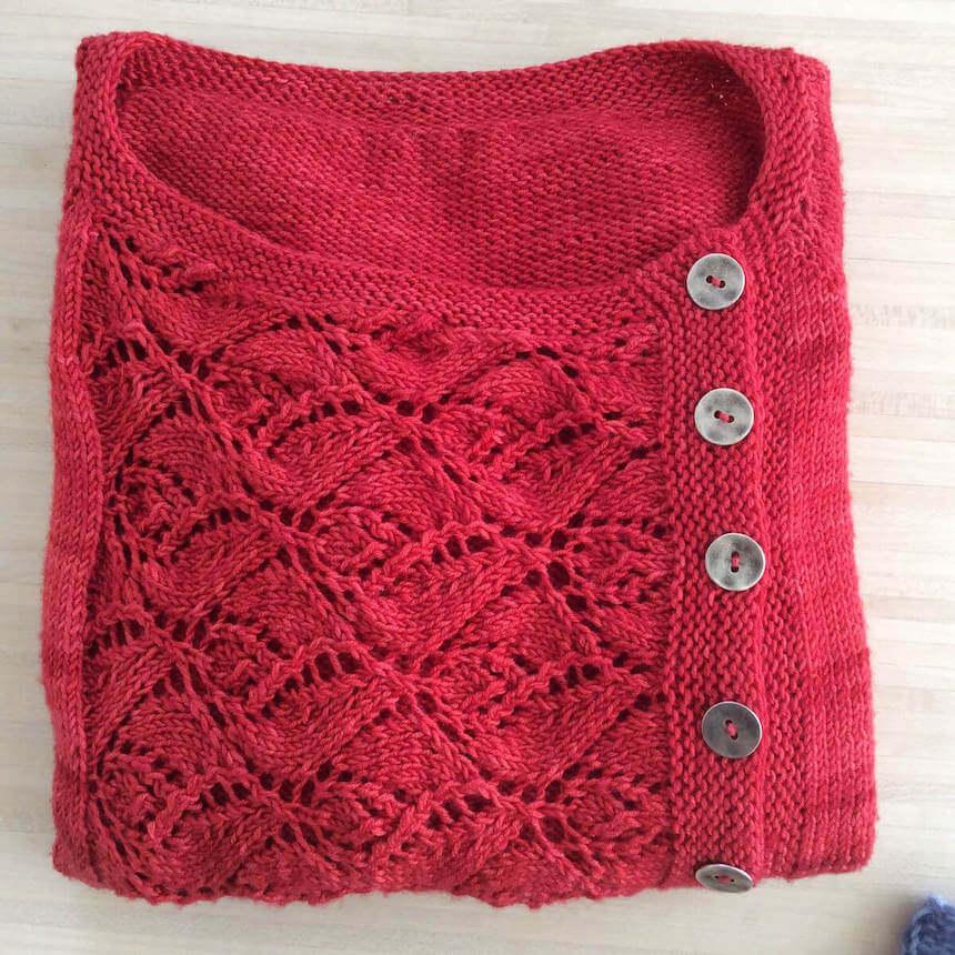 joli pull à tricoter en physalis