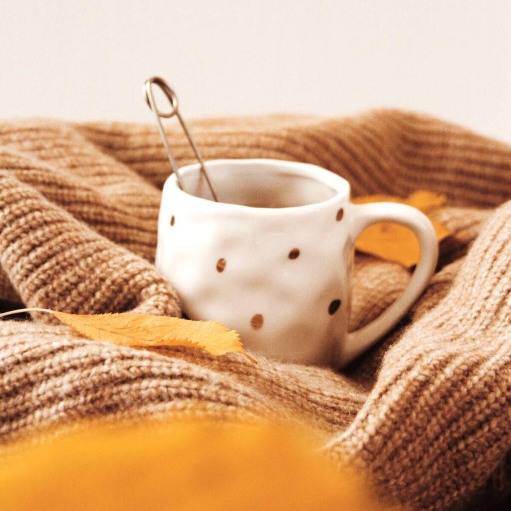 tricothé rencontre entre tricoteuses